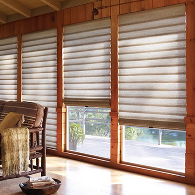 Hunter Douglas Vignette Shades
